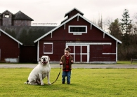The Bulldog and his Boy; photo by P. Anderson.